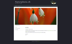 screen naturphoto neu